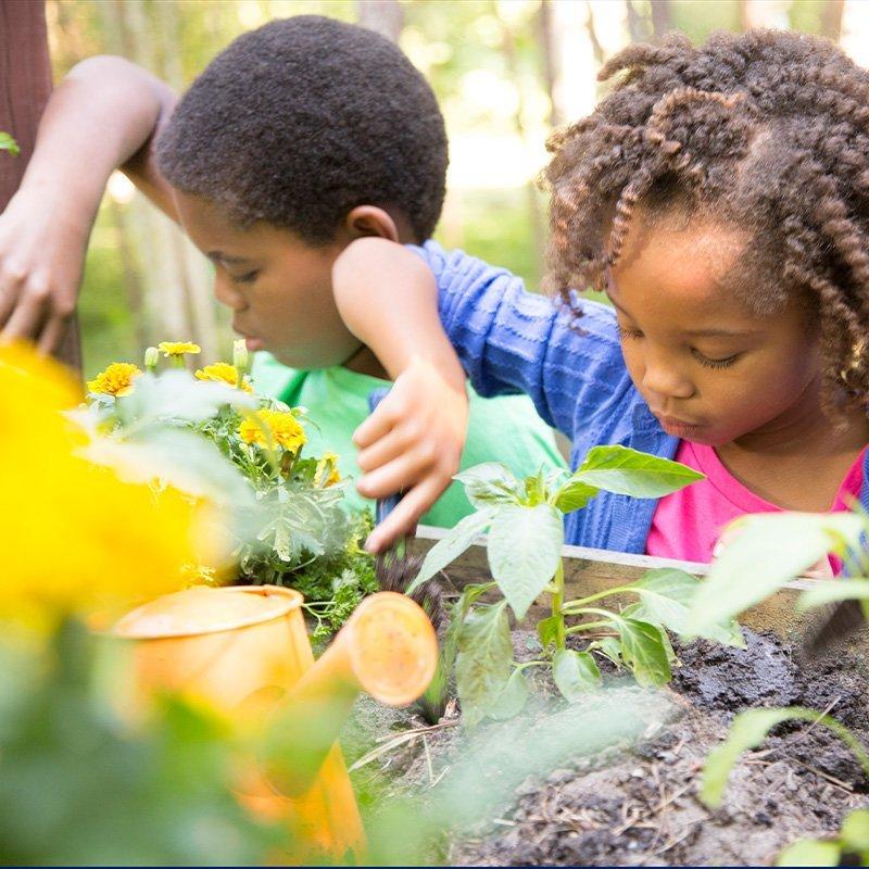 kids working in a school garden